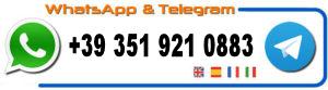 Contact on WhatsApp & Telegram